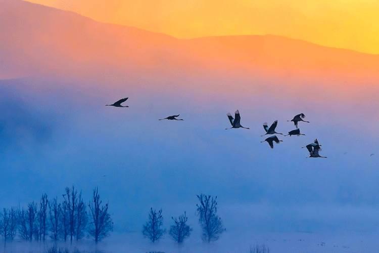 值得交往的三种人:入世的强者 出世的智者 阳光的普通人