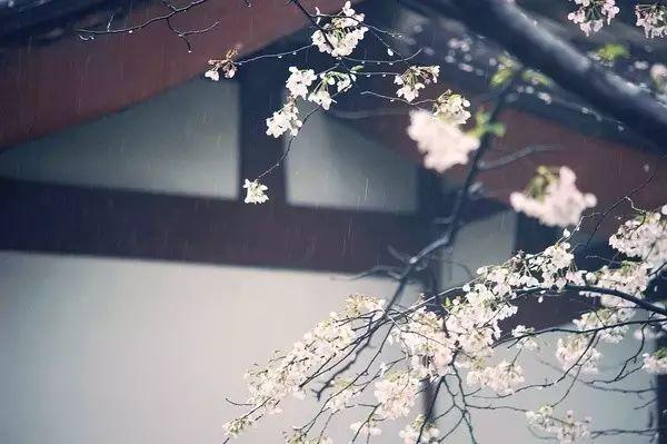 林语堂:和在一起的人慢慢相爱