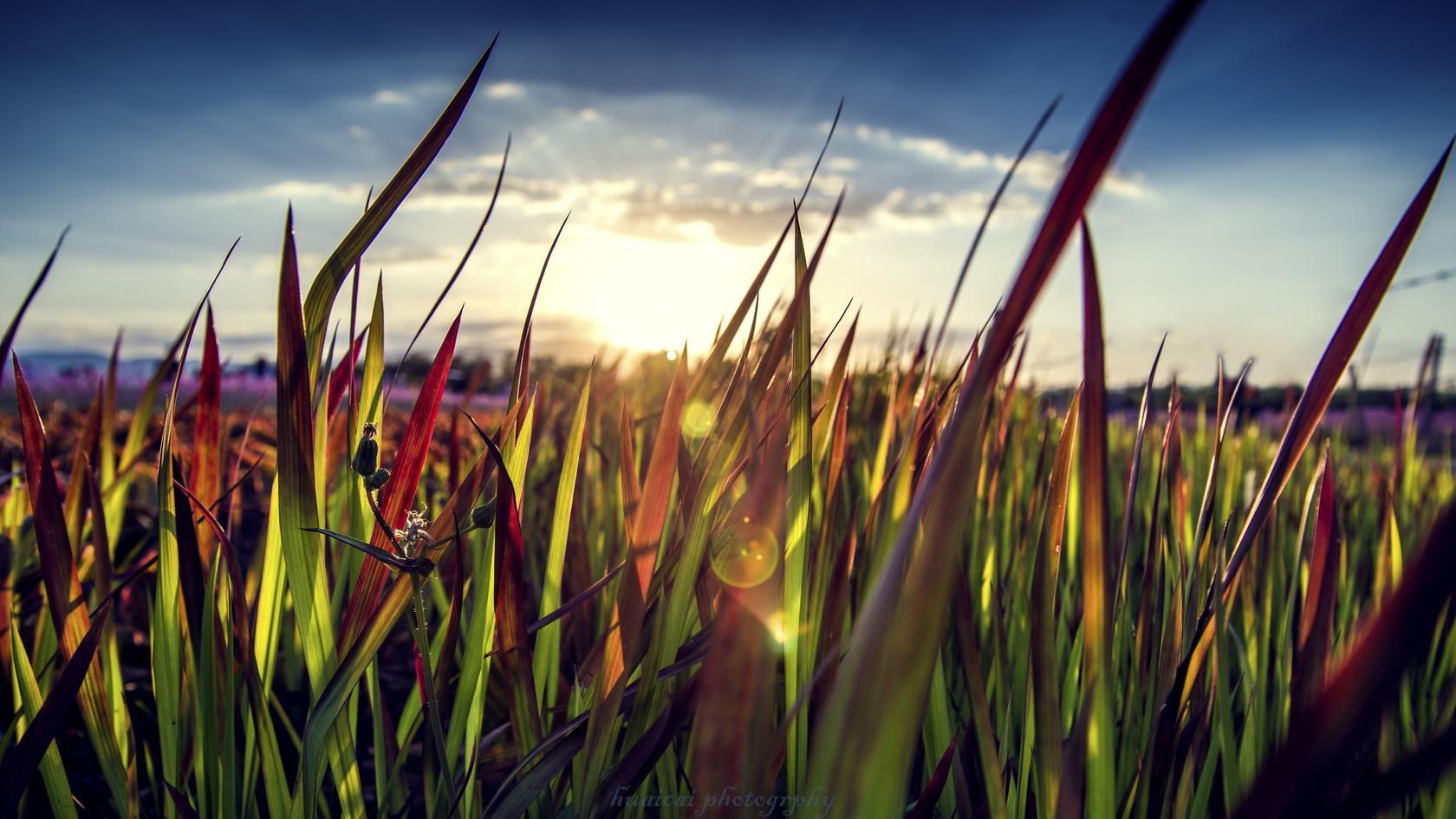 天地有大美,修行人眼中的世界是什么样?