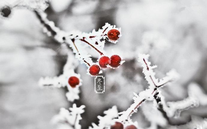 冬至进补宜忌
