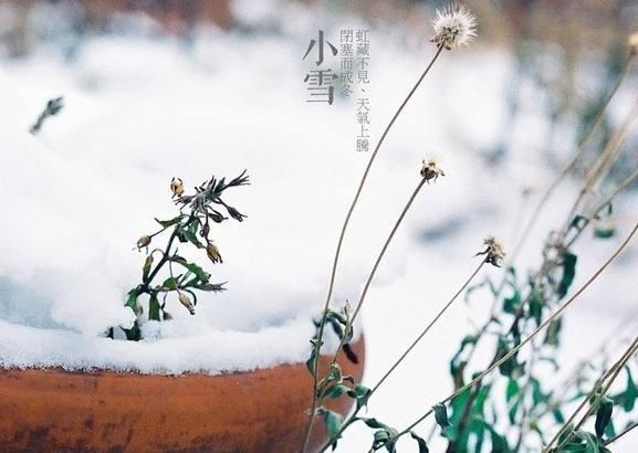 道医养生笔记丨小雪时节话寒邪
