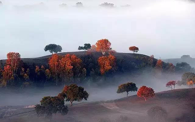 霜降:霜叶烂漫 去看看最后的秋天