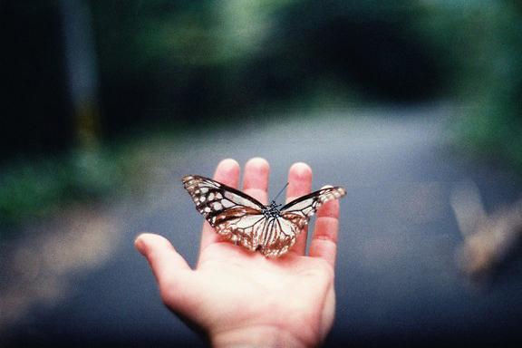 往生是当下转念头的功夫 不是临命终的事情
