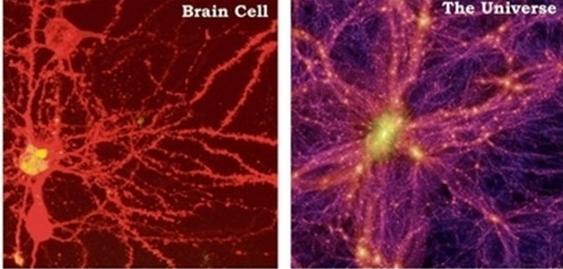科学家惊人发现:宇宙竟是大脑组成