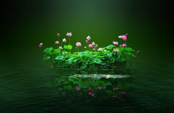 莲花池神与修行人的对话 值得深思