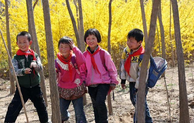 回不去的乡土:乡村秩序重建中的儒家关怀丨参赛作品