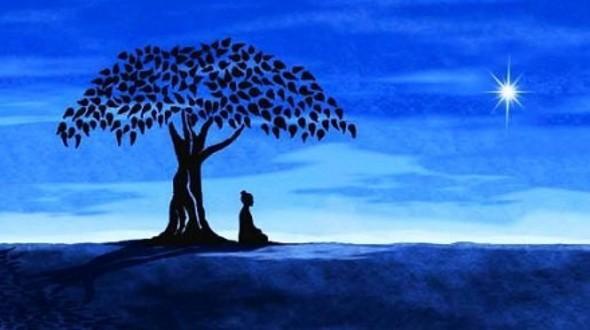 释迦牟尼佛在菩提树下悟到了什么?