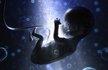 惊了!佛竟知道胎儿在母体中的发育状态