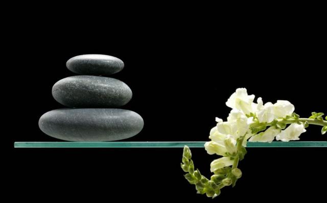 星云大师:学会用这五种心 让生活充满禅意