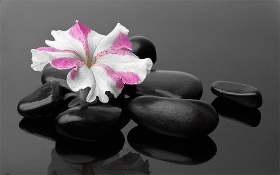 迷茫的人可以在佛法中得到启迪  在禅修中得到妙用