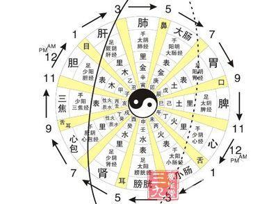三、阴阳学说在中医学中的应用
