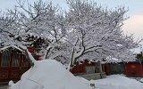 佛国五台山又下雪了