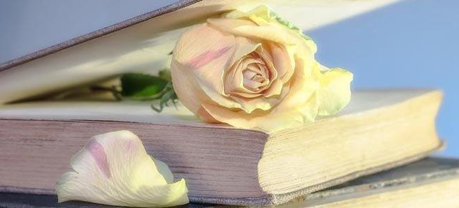 世界读书日:最是书香能致远