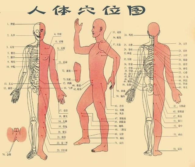 奇门与人体关系探微