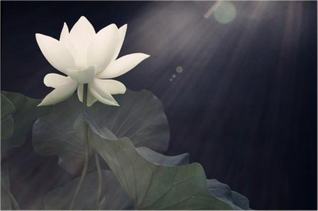 原来汉语中的这些词都来源于佛教(图片来源:资料图)