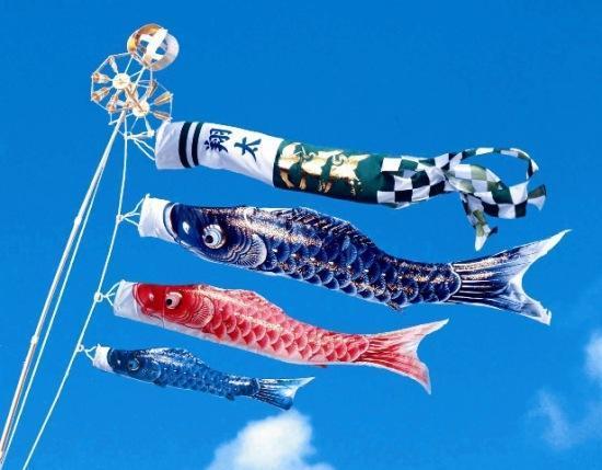 """日本的端午节:鲤鱼旗飘扬的""""男孩节"""""""