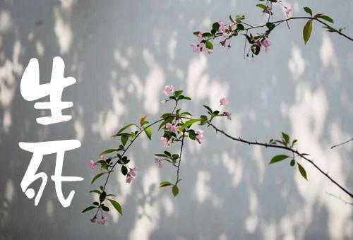 【小陆精选佛教人生】要提倡临终关怀 这个事情很了不起!20171019