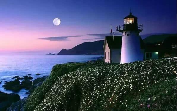 明月照亮了佛禅的世界