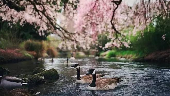 春风吹醒 一个崭新的自己