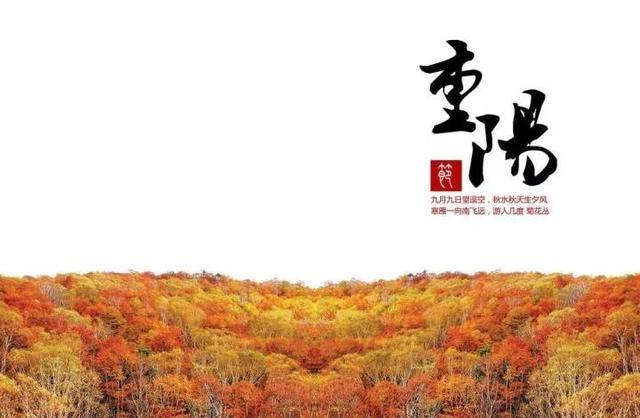 重阳节:九的传说,酒的故事,久的祝愿