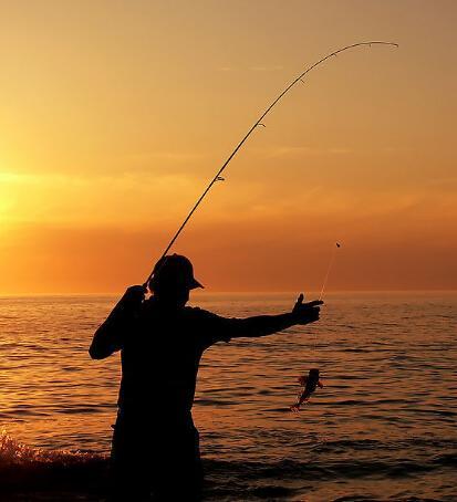 新手钓鱼不用慌,钓鱼老手一步步教你,钓鱼变得极其轻松