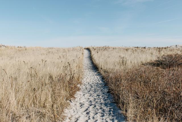 弘道读经会丨两般不用人教导,来至何处走何路