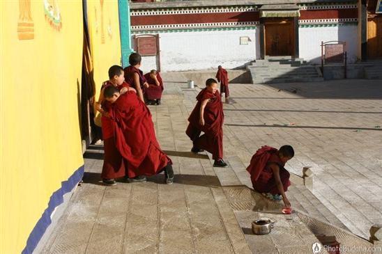 纯净简单:青海小喇嘛们的快乐生活