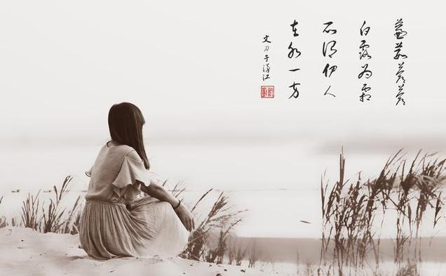 《蒹葭》:岁月河流中一首最美的诗