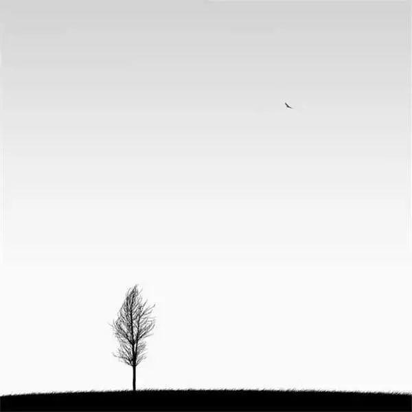 人定胜天:人要顺应自然而不是顺其自然