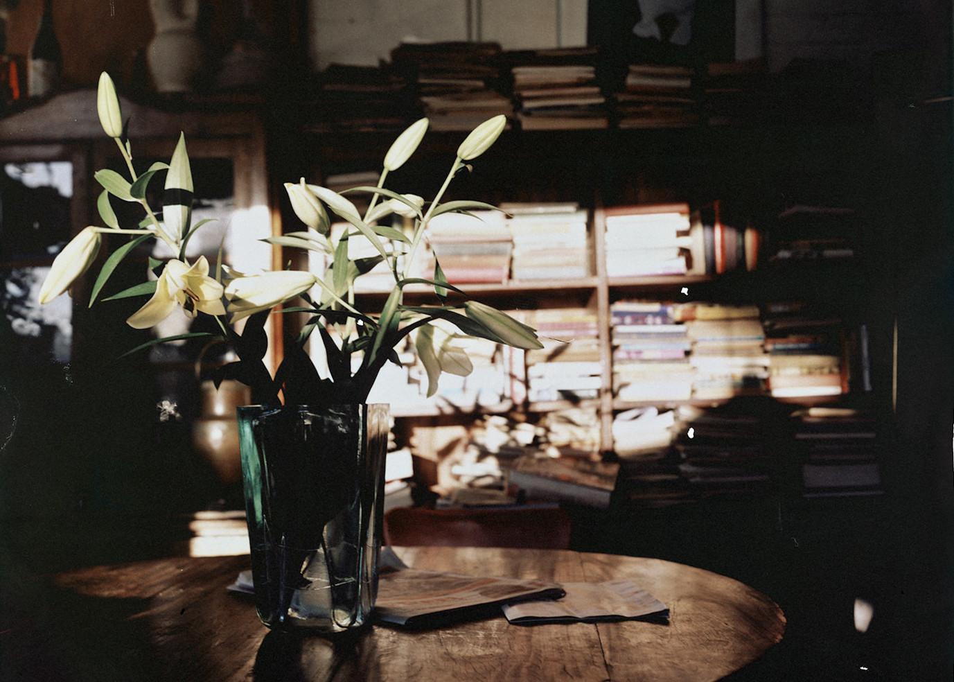 陈寅恪的读书方法:不惟书 敢怀疑