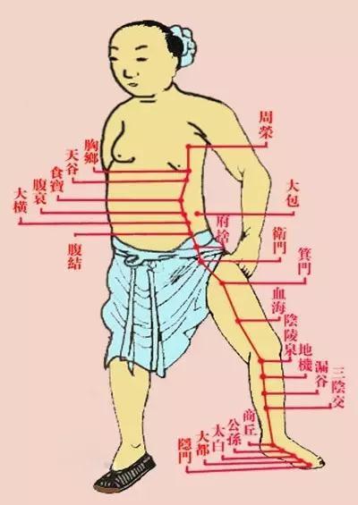 道医千古一绝|胎息状态中内证经脉络穴玄机大揭秘