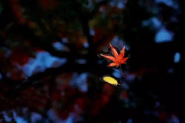 梁漱溟:学会调理自己的心思与心情