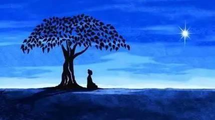 """【法眼看世间】僧人不如法是因为背离了""""了生脱死""""的价值观"""