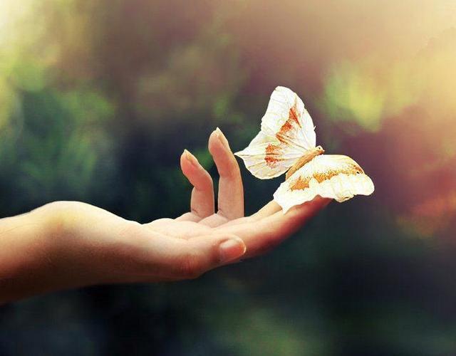 不要把感情当作生命的全部 不要把执着当成爱!