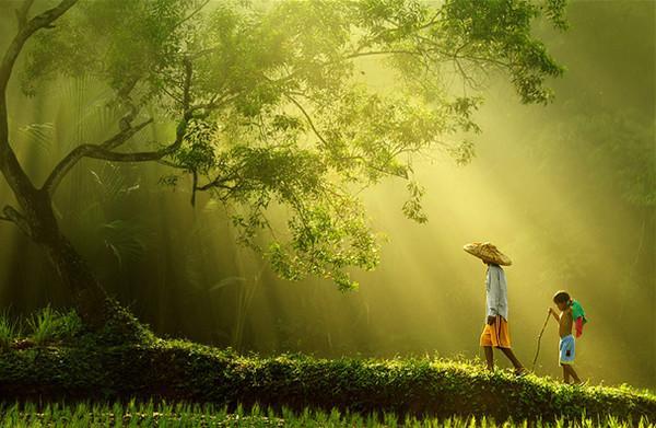林楚方:心有多净 世界就有多净