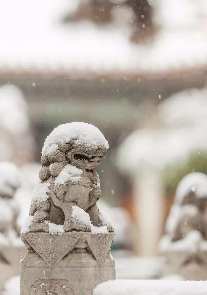 初冬:十首诗词 十种美