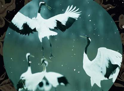组图:寒塘渡鹤影 白雪照仙魂