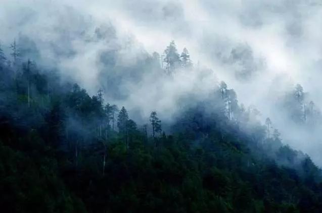 景物诗:追寻人间繁华 回归自然栖息