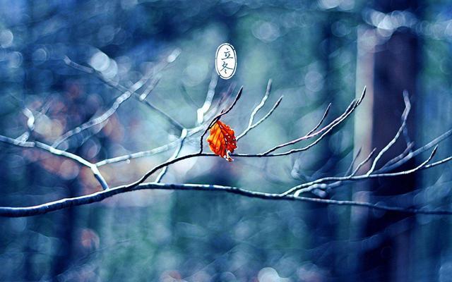 道医养生笔记丨立冬:细雨生寒未有霜,勿忘御寒防冻伤