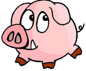 2018年十二生肖运势大公开:猪篇