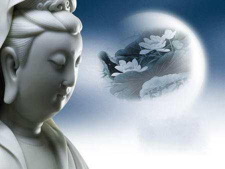 学习佛陀的智慧 感恩世上的一切