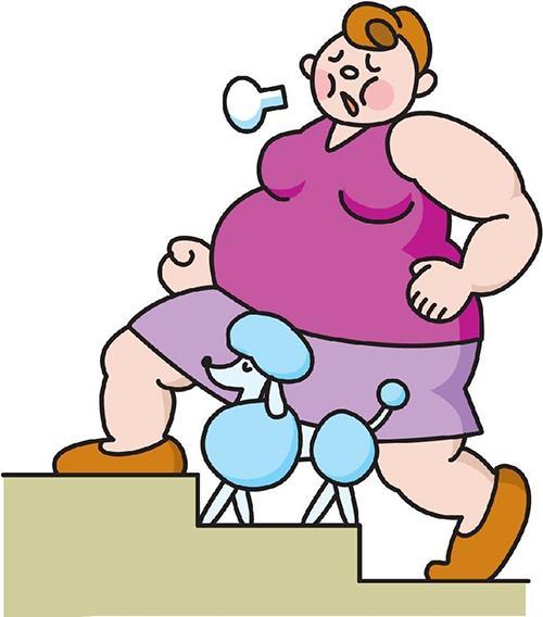 肥胖气虚分四种 中医教你辩证施治