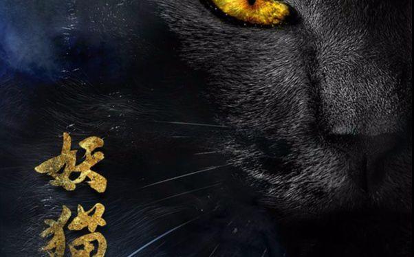 《妖猫传》中的冷知识:告诉你唐代猫妖的真实故事