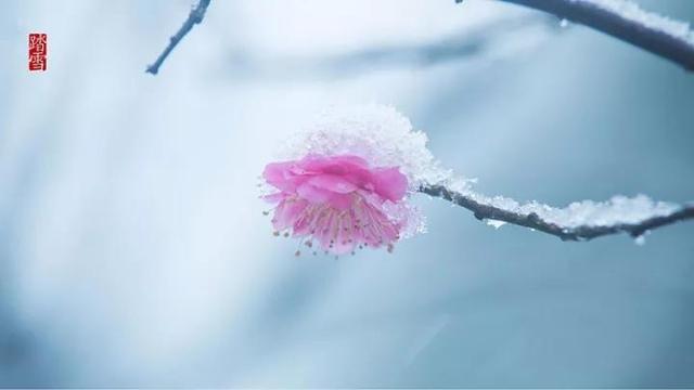 立冬四件事 作陪岁末的冬天