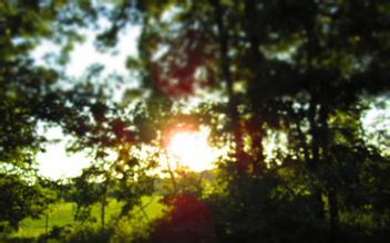 《道德经与人生》丨 希夷先生:用清静之心观照世界