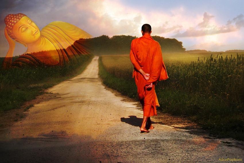 罗汉智慧答疑:既然在家出家一样得道 何必出家呢?