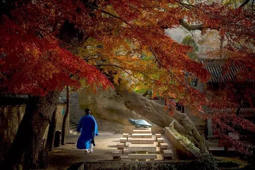 弘道读经会丨修道即修心:如何处理好道教与现代社会的关系