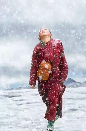 漫天飞雪 朝圣拉萨的路上最美的信徒!
