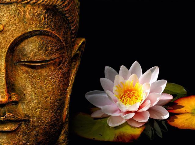 佛种能否开花 关键在心地   文:妙江大和尚 - 清 雅 - 清     雅博客