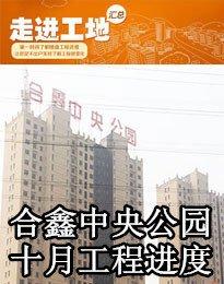 合鑫中央公园十月工程进度